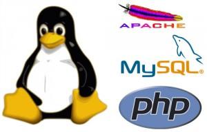 How to Install Apache, MySQL, PHP on VPS Ubuntu VULTR